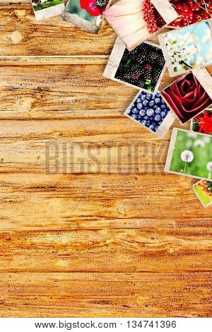 Different photos of nature pictures on wooden background