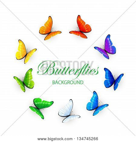 Set of multicolored butterflies arranged in a circle, isolated on white background, illustration.