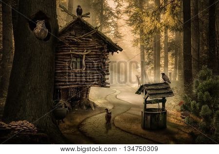 fairy witch house beside the path in the dark forest