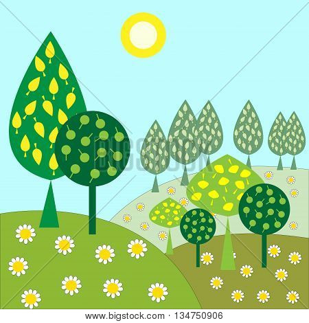 The landscape with trees and sunshine daisies