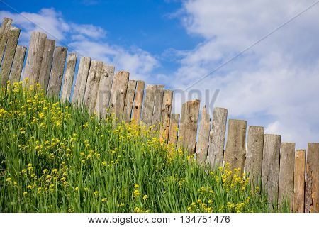 Pastoral views on palisade from the wooden boards. Fence is a village full of flowers. Rural life outside the city. Landscape on bright flowers and a wooden fence on a ranch. Pasture for livestock.