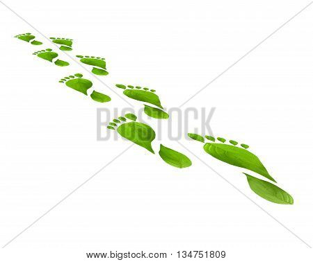 Green leaves foot steps isolated over white background. Environmental concept. Think Green. Ecology Concept and susteinable energy.