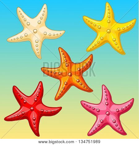 Five multi-colored cheerful cute starfishes on a blue-yellow background. Red, yellow, pink, biege and orange cartoon starfishes.
