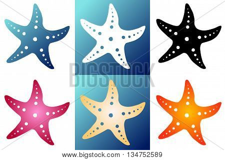 Set six multi-colored silhouette starfish on a white and blue background. Blue, white, black, red, beige and orange silhouette starfish.