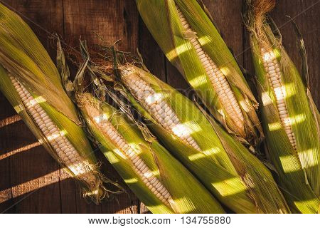 Corns on the old wood,corn from VietNam.