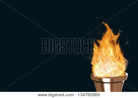 Torch fire against black background