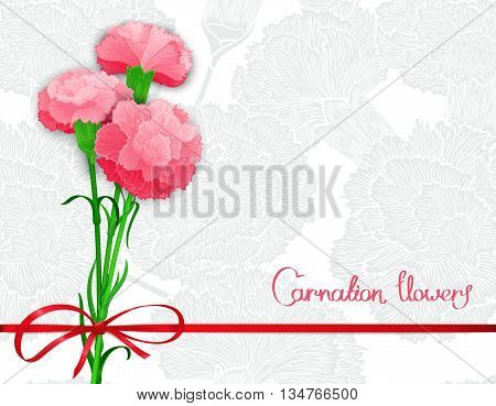 Background template with bouquet of three pink carnations and silk ribbon with a bow. Vector illustration. Stylized design for backdrop banner and other decoration