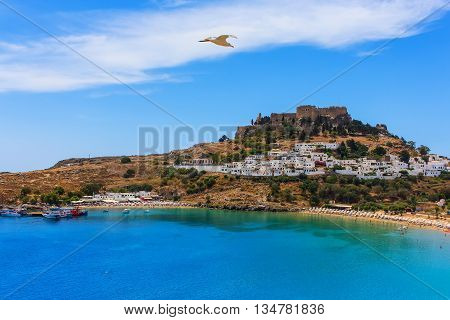 seagull flies over a beautiful cove beach Lindos acropolis ships