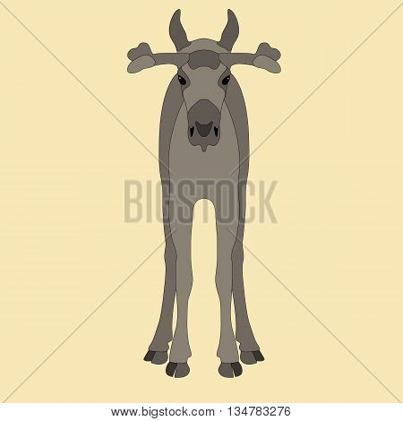 young elk face realistic vector illustration gray