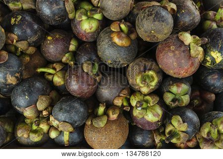 Fresh organic mangosteens for sale in the market. ** Note: Shallow depth of field