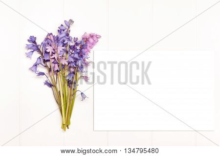Styled stock photography bunch of bluebells on a white wooden floorboard background. Copy space for any business promotion instagram message headline