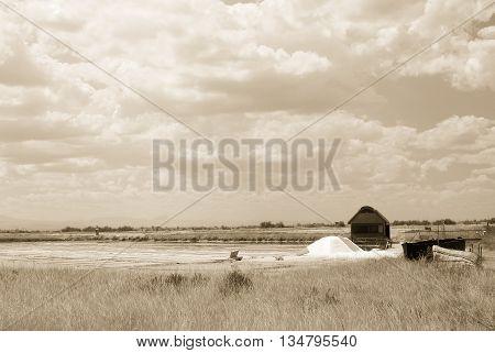 salt of Cervia in italy in summer
