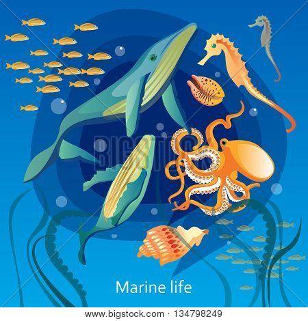 Ocean Underwater Life Background. Sea Underwater Life Vector Illustration. Marine Underwater Life Design. Underwater Life Cartoon Decorative Symbols.