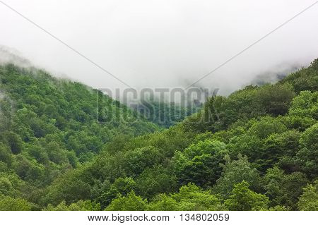 Two mountain hills with white fog between