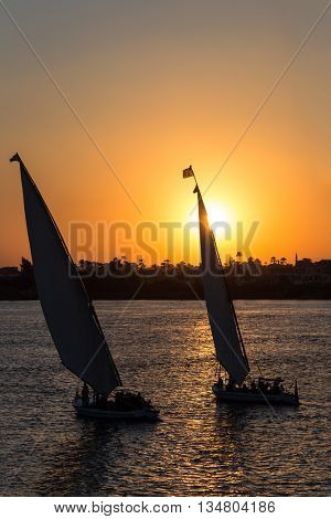 Tourist sailboats at Luxor waterfront during sunset.