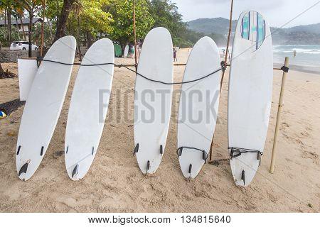 Surf Boards on sand beach at kata beach Phuket Thailand