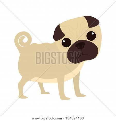 Animal and Pet love represented by an specific type of dog race over isolated and flat illustration