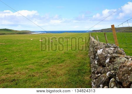 Scottish countryside livestock fence. Stone wall in perspective. Beautiful rural panorama from Scotland
