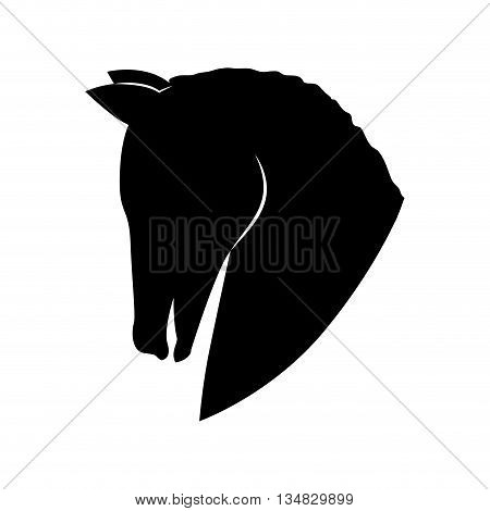Animal  represented by horse head  icon over flat and isolated background