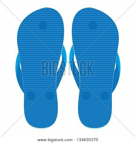 Slippers set of back view isolated on white background. Floor on blue slippers.