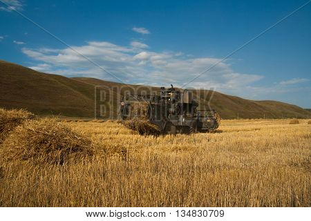 Harvester removes the ripened wheat crop on the field on the backdrop of picturesque mountains
