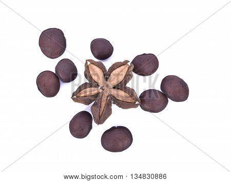 sacha inchi peanut seed on white background