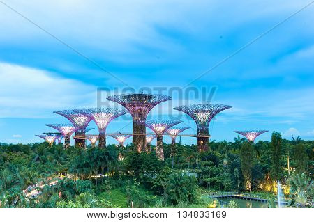 SINGAPORE - May 13 2016: Supertree Grooves over the blue sky. Gardens by the Bay is a park or botanic garden in Singapore.