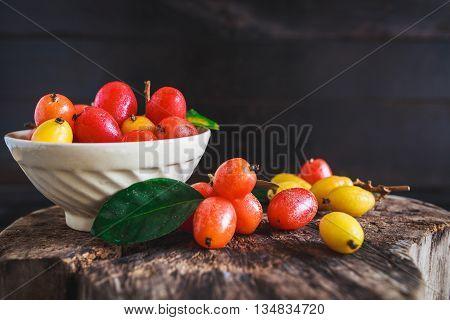 Elaeagnus latifolia fruits on the old wood