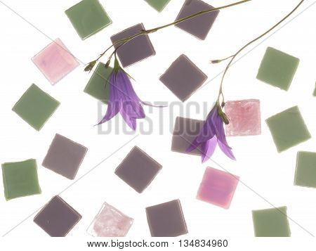 beautiful pearl pink purple and green glass mosaic with light stripes and delicate flowers of lilac-purple bells similar in color to the mosaic on a white background isolation