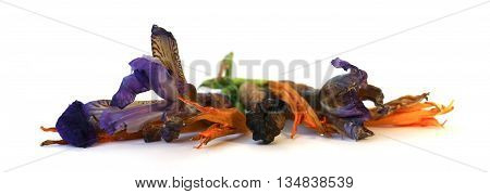 geranium petunia dry delicate flowers leaves and petals of pressed iris rose marigolds Aquilegia pelargonium isolated on white background scrapbook