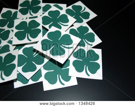 Four Leaf Clovers Cards On Black