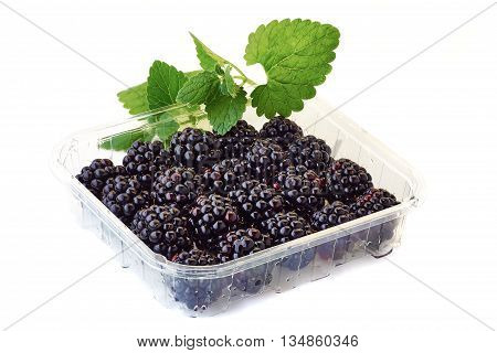 A punnet of blackberries with mint branch isolated on white background