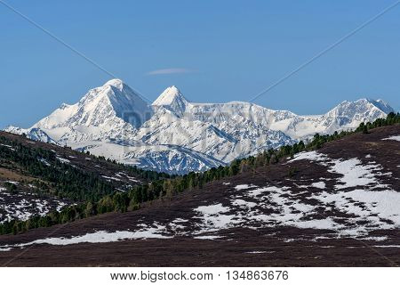 Scenic view with the beautiful mountain peaks with snow and glaciers slopes covered with snow and sparse brown vegetation and cedar trees against a blue sky