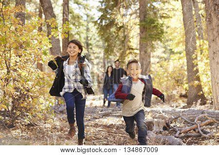 Parents watching their children running in a forest