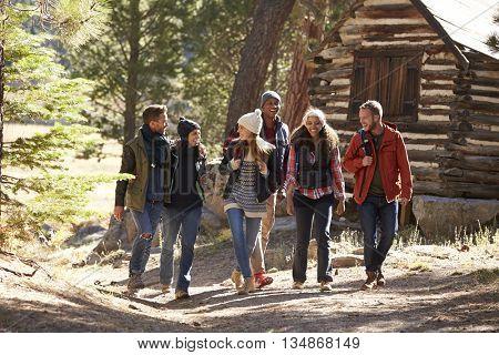 Six friends walking on forest path near a log cabin
