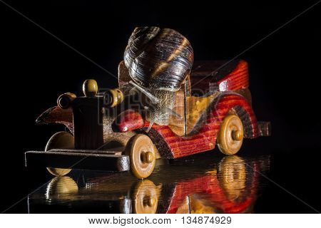 Snail riding a wooden toy car isolated on black  background