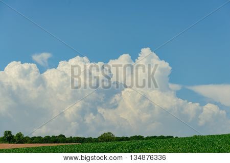Cumulus clouds against a blue sky above cultivated farm land.