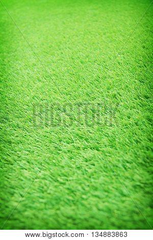 artificial green grass field texture for background