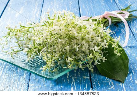 Delicate bouquet of wild orchids also known as Lesser Butterfly Orchid (Platanthera bifolia) on a blue wooden table