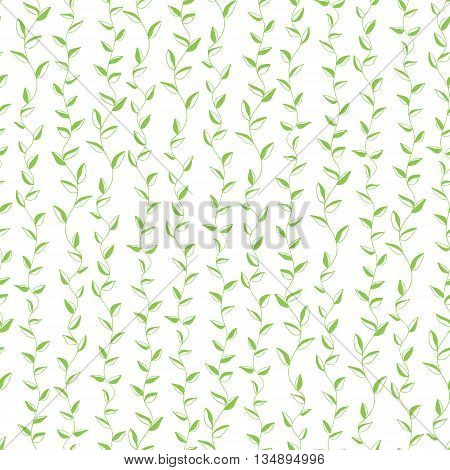 Seamless background of branches with green leaves . Vector background