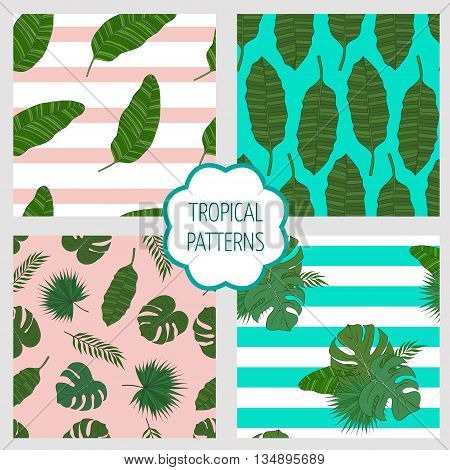Set of patterns. Leaves of the tropical palm trees on the colored and striped background.
