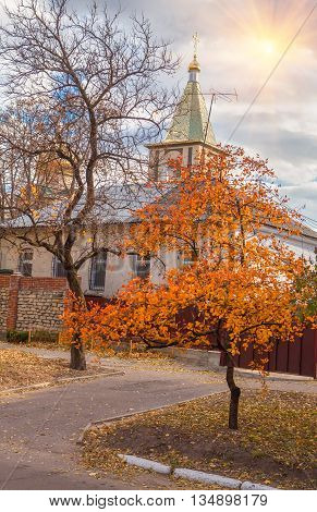 autumn scene with beautiful orthodoxy church and trees with yellow leaves