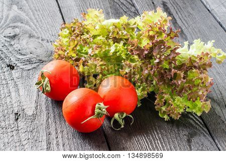 Fresh crispy purple lettuce Lollo Rossa and tomatoes. The source of vitamins and minerals detox diet health or vegetarian food concept