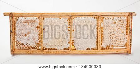 Isolated wooden honeycomb with honey and beeswax