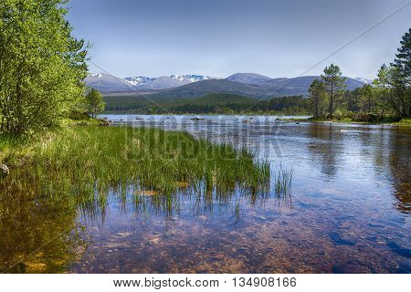 The clear waters of Loch Morlich Scotland. The Cairngorm mountains in the background.