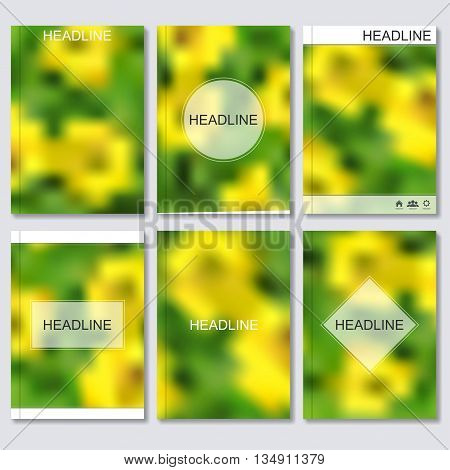 Modern vector templates for brochure, flyer, cover magazine or report in A4 size. blurred spring background..