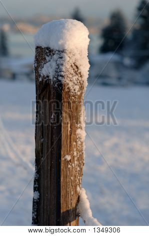 Fence Post With Snow