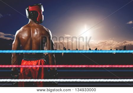 Rear view of boxer standing against picture of a city by sunrise