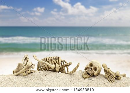 skeleton with skull on sand blue sky with sea background.