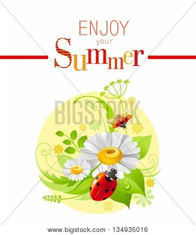 Summer icon with nature elements - daisy flower, green grass, leafs, ladybugs on pink background